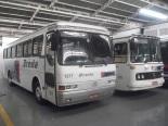 ônibus Monoblocos