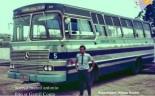 ônibus transbus