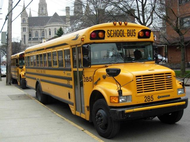 schooil bus