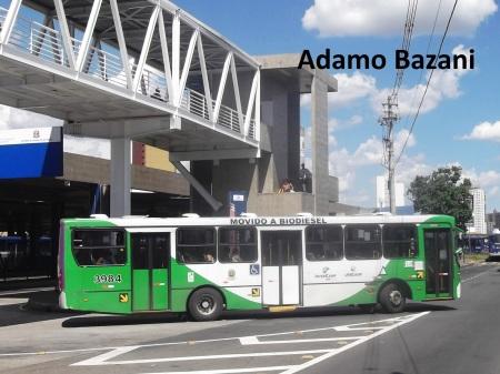 ônibus Campinas