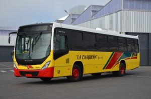 Novo Torino
