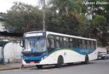 demanda ônibus