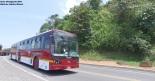 Bus BYD